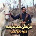 دانلود آهنگ مرتضی محمد زاده به نام دلو دلو غم دریای ماتم