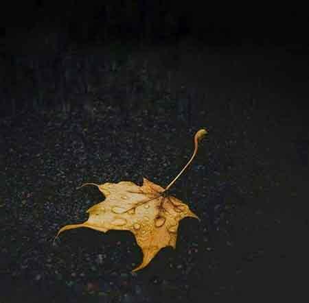آهنگ علی رزاقی زخم جدایی