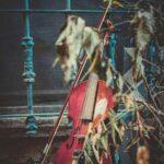 آلبوم حسام هاشمی روزل اصیل